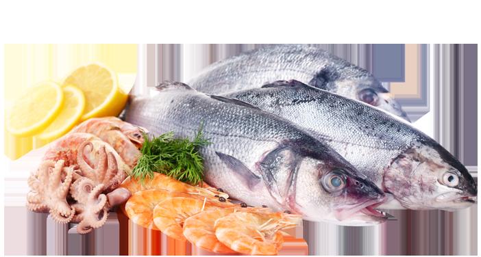 pesce fresco a Latina