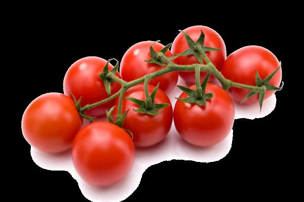 pomodoro fresco
